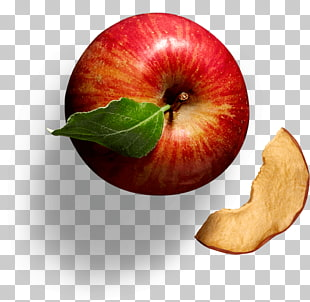 16 dried Apple Chips PNG cliparts for free download.