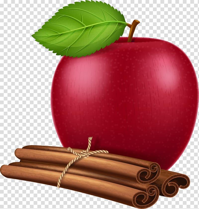 Apple True cinnamon tree Illustration, red apple and.