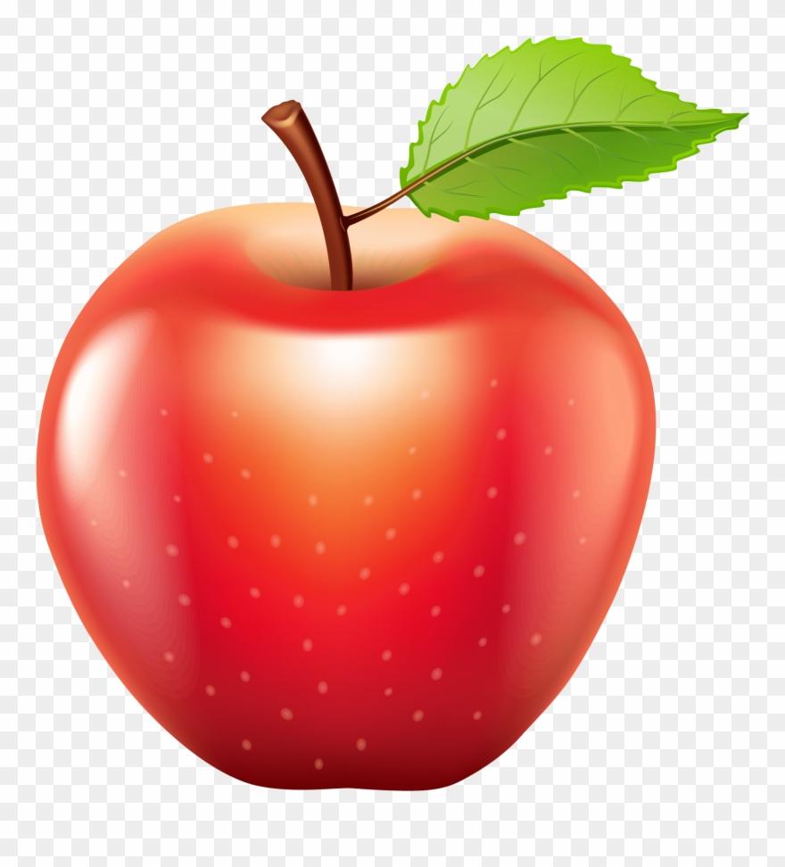 Apple Images Clip Art Apple Png Clip Art Best Web Clipart.