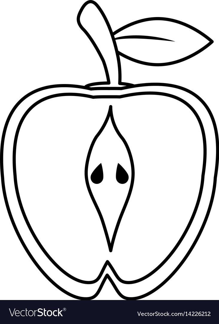 Half apple food healthy image outline.