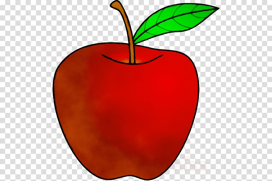leaf clip art red fruit apple clipart.