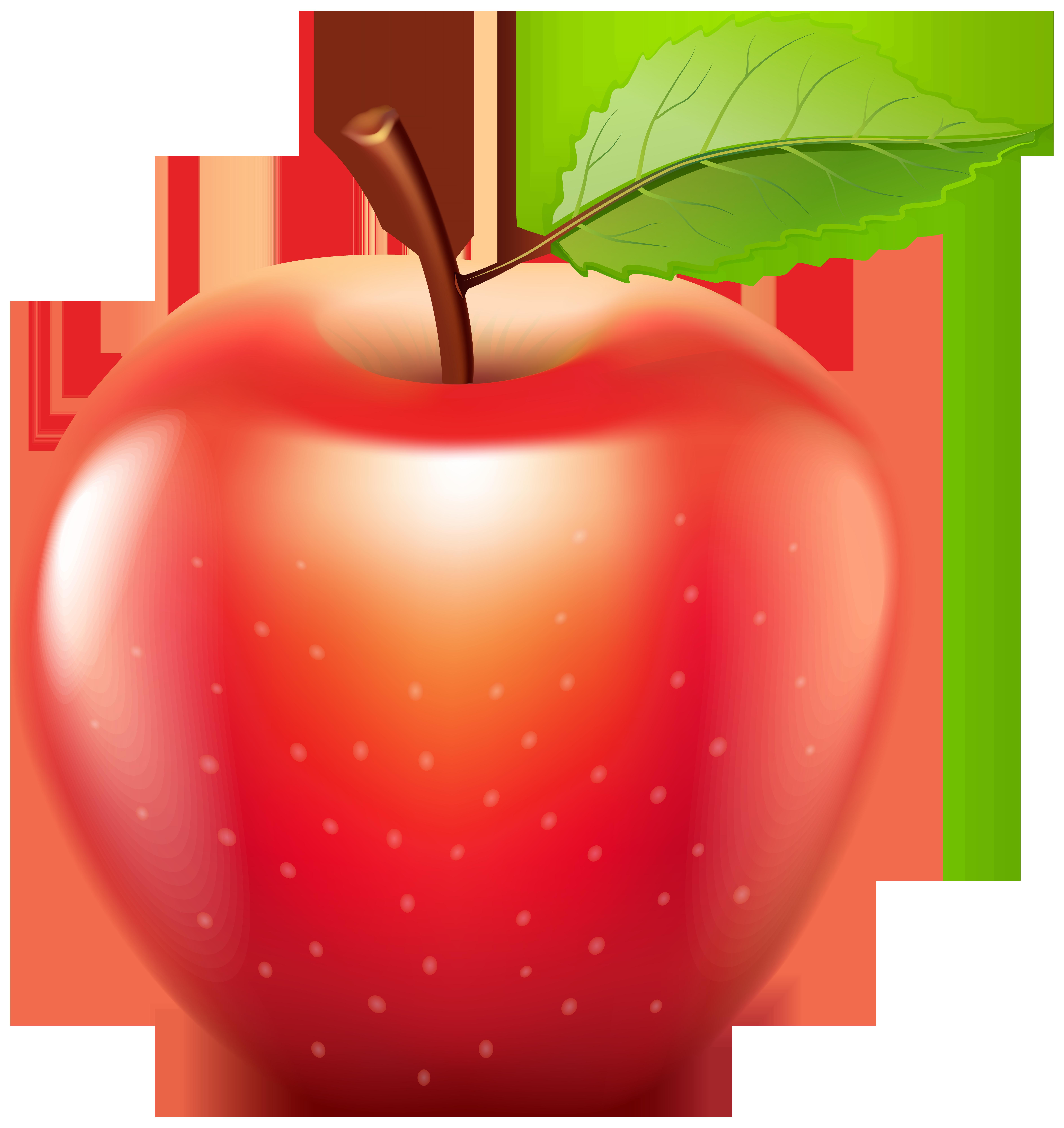 Apple PNG Clip Art.