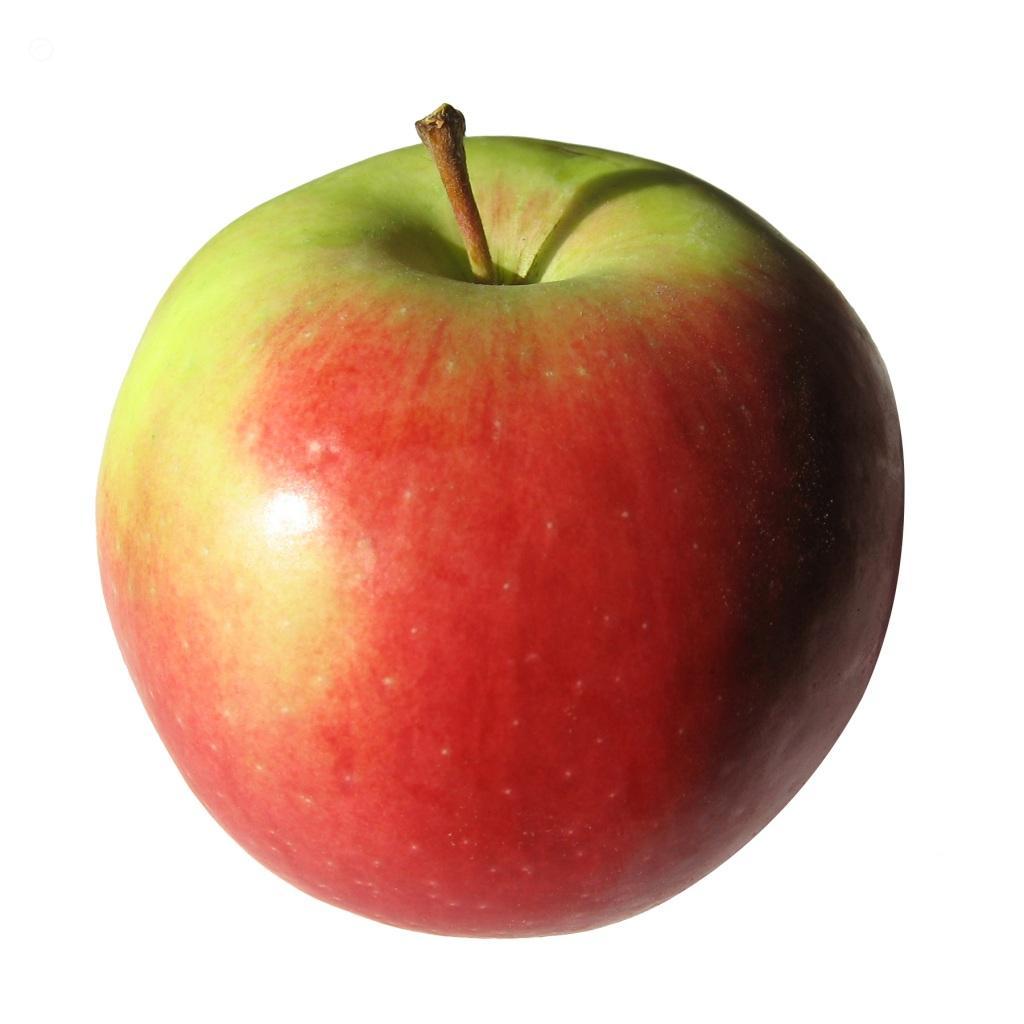 Free apple clip art clipart image.