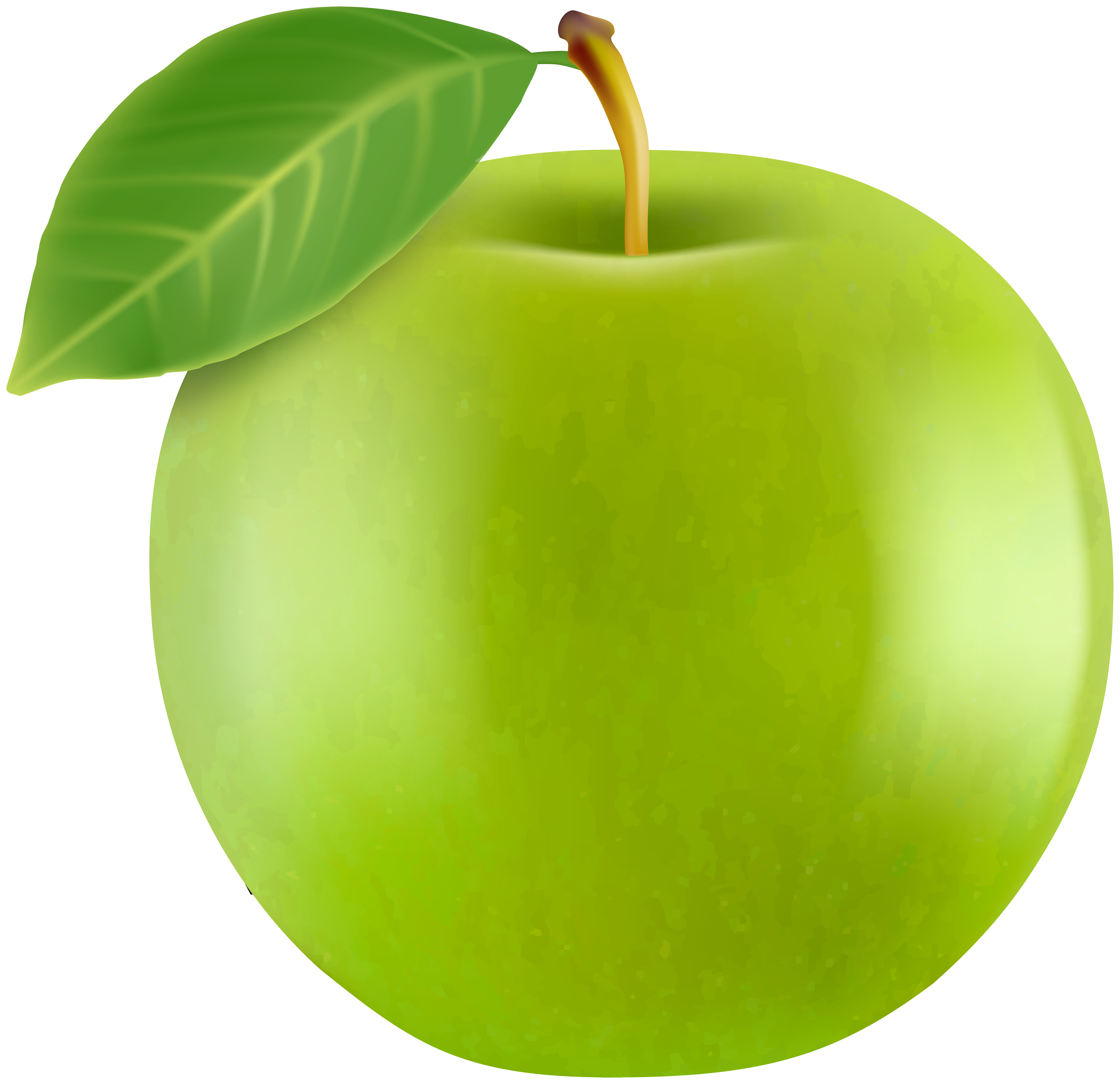 Realistic Green Apple PNG Clipart.