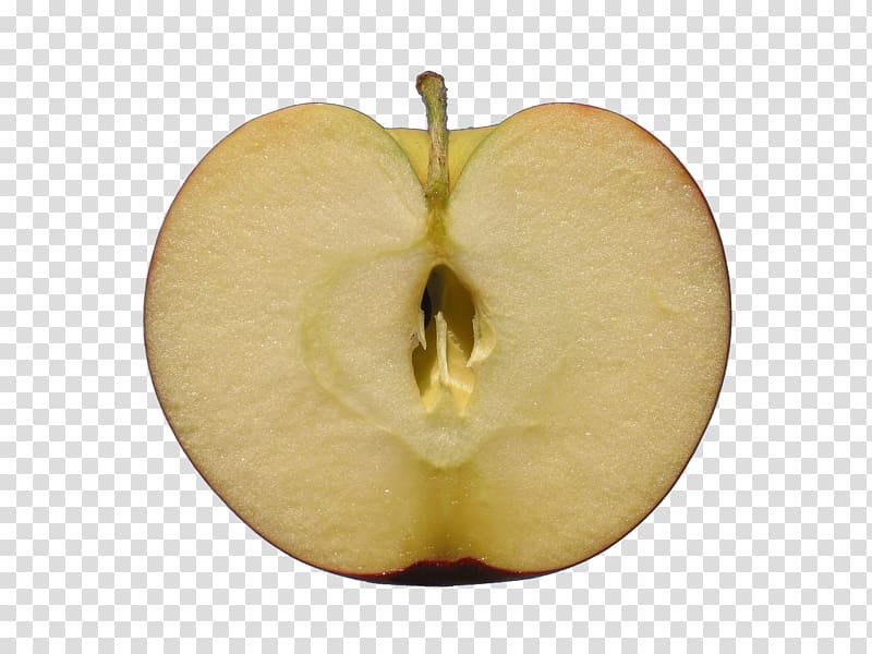 Apple Icon, Apple half cut transparent background PNG.