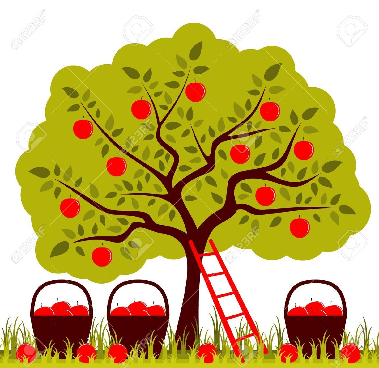 Apple orchard clipart #7.