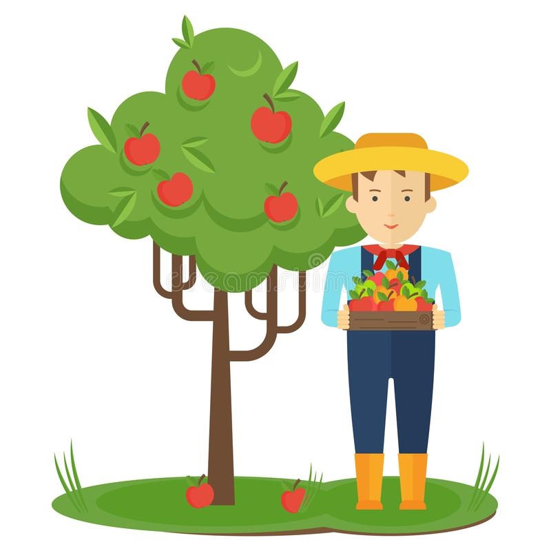 Apple Farmer Stock Illustrations.