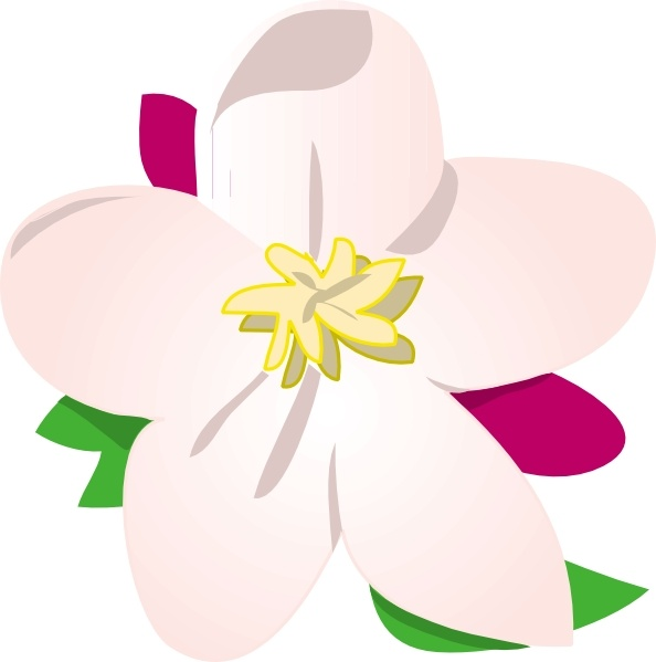 Apple Blossom clip art Free vector in Open office drawing svg.