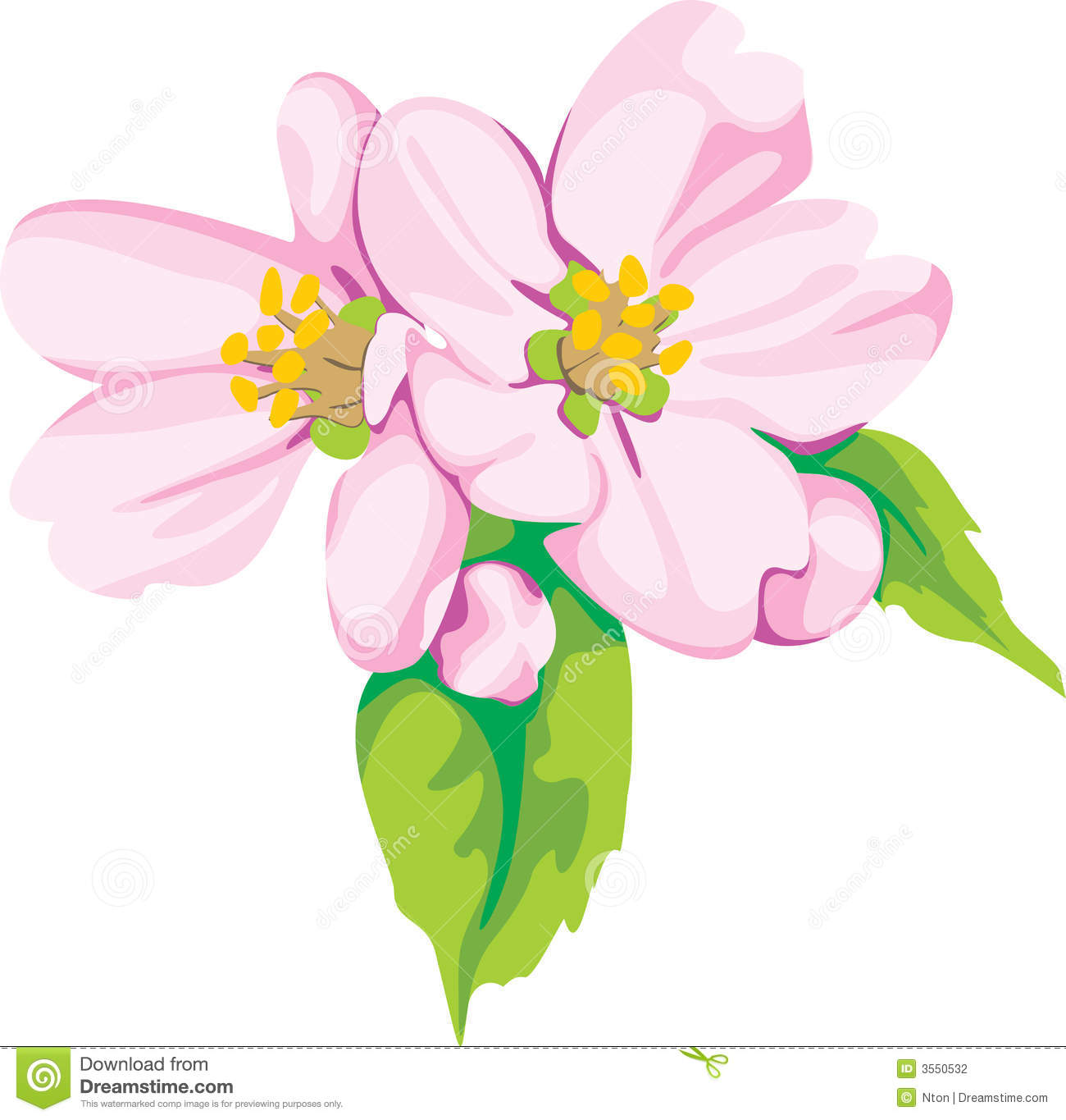 Apples and Flowers Clip Art.