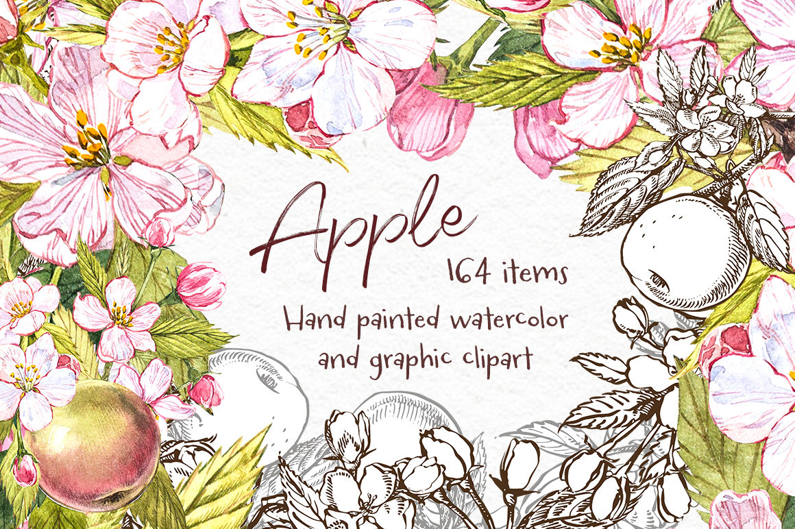Apple.Graphic & Watercolor clipart By Astro Ann.