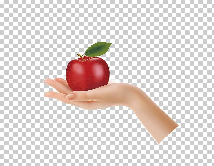 Apple Hand Stock Photography PNG, Clipart, Apple, Apple.