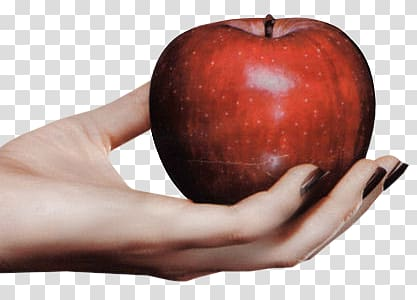 Paradise apple Hand Woman Foot, apple transparent background.