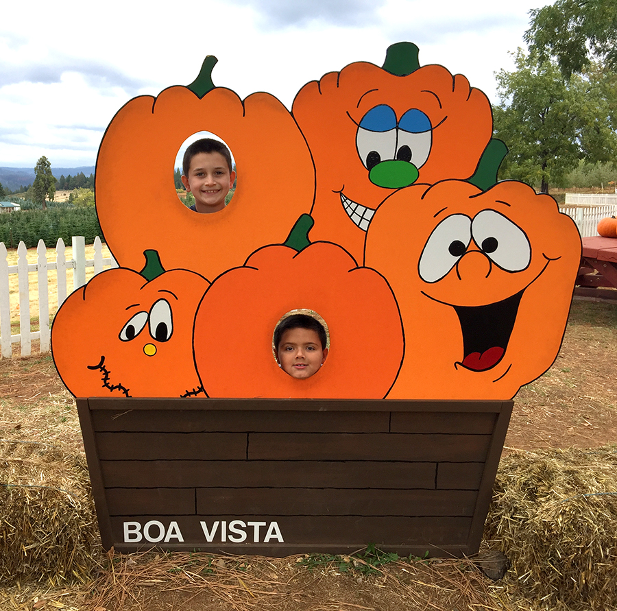 Boa Vista Orchards, Open Year Round At Apple Hill.