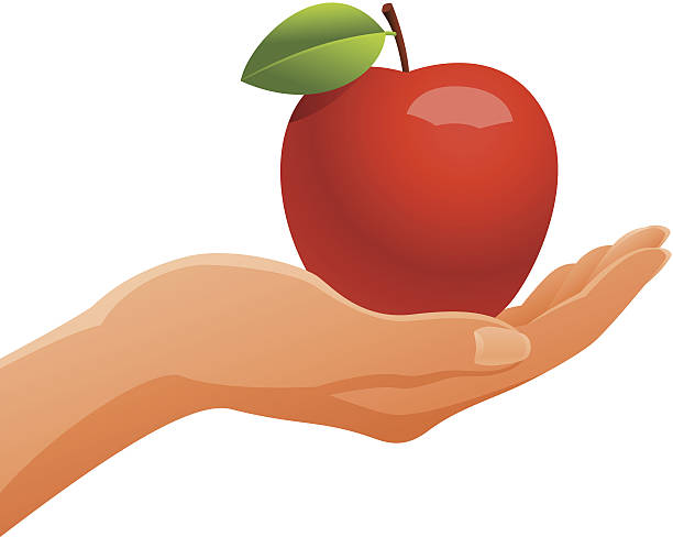 Hand Holding Apple Clipart.