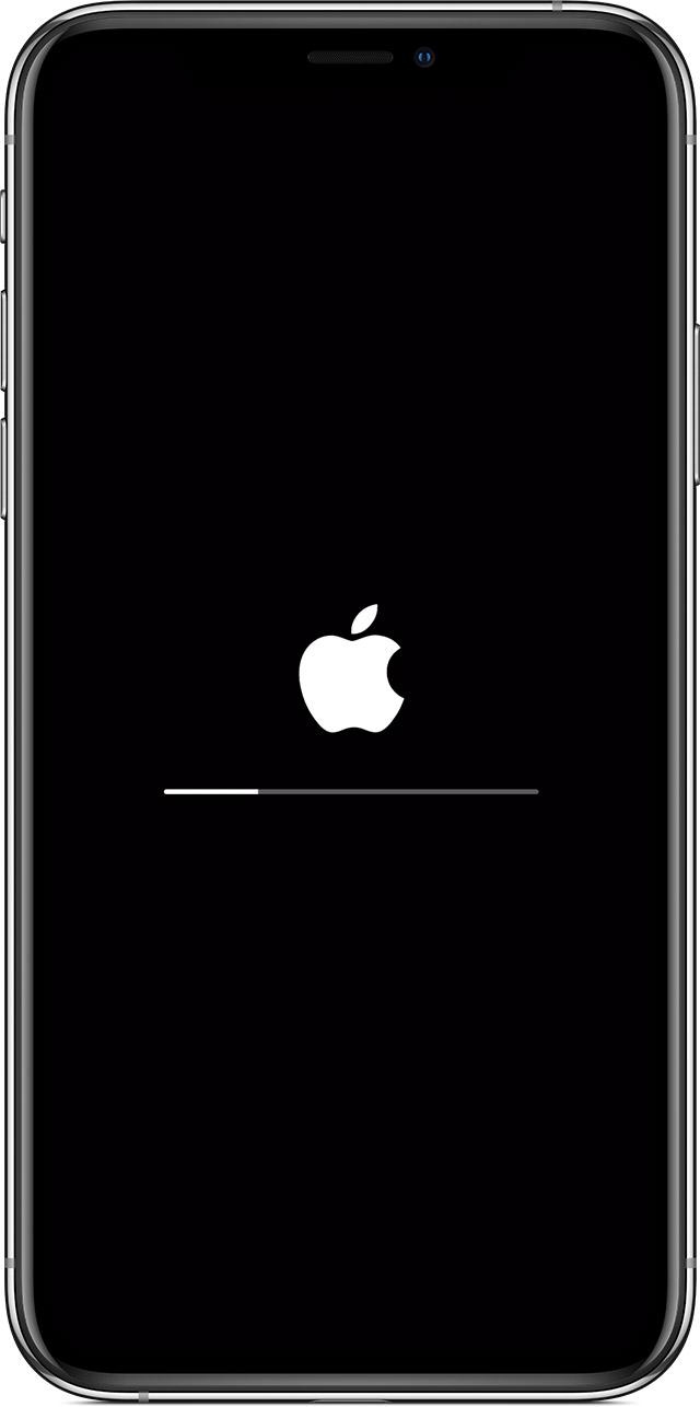 Apple logo with progress bar after updating or restoring.