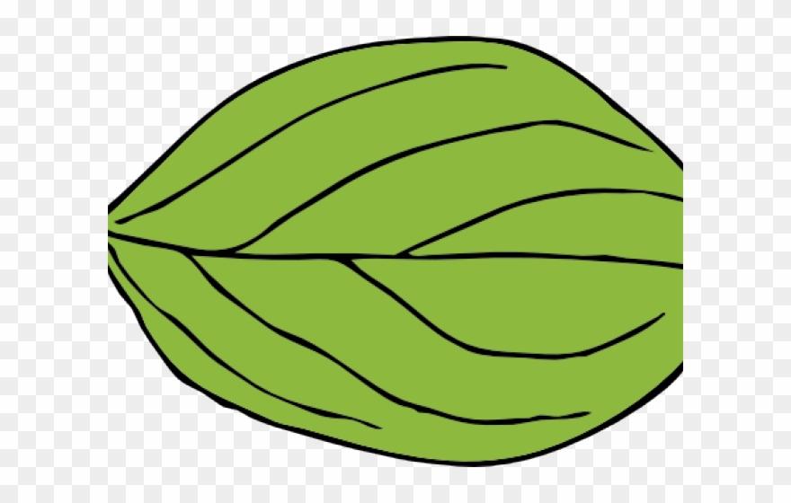 Leaf Clipart Apple Tree.