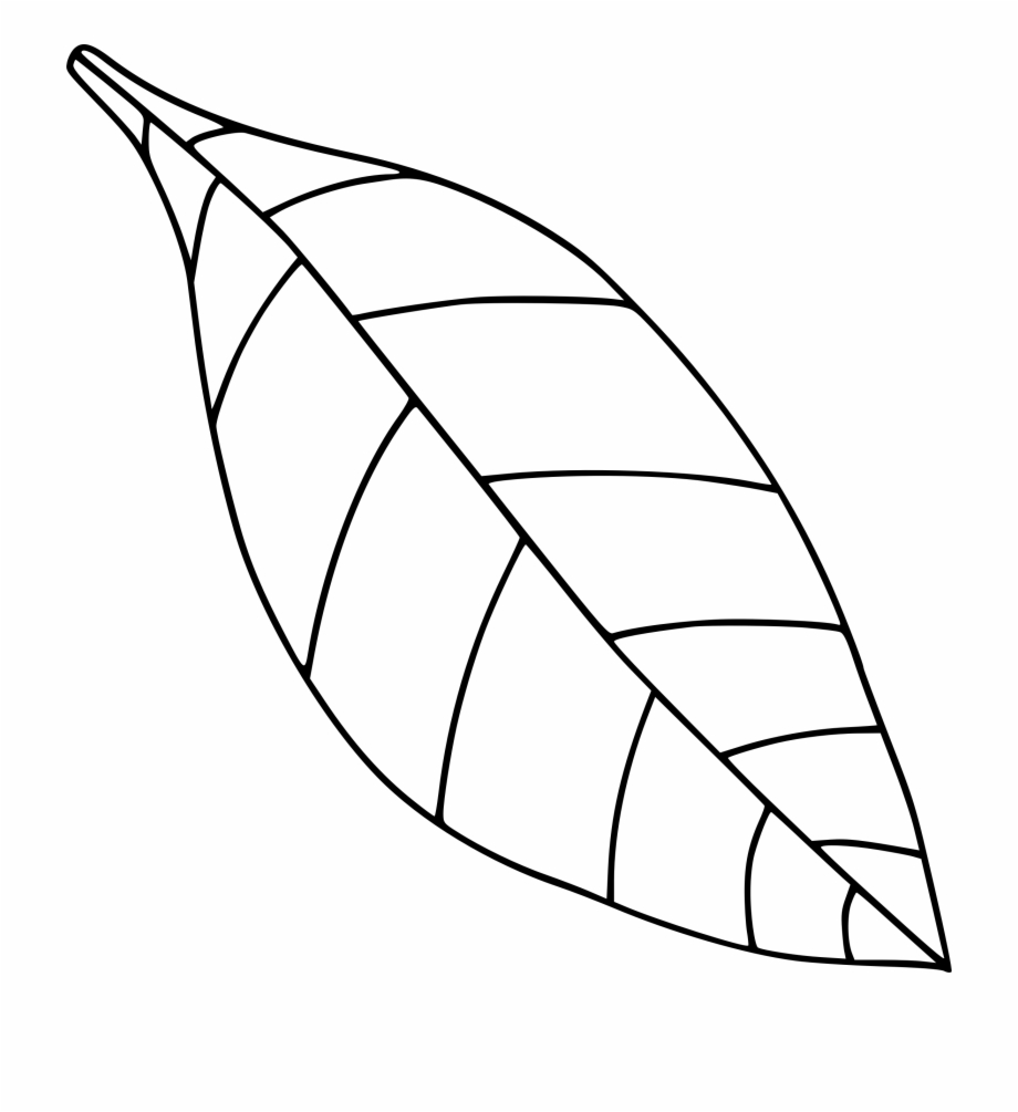 Apple Leaf Png Black And White & Transparent Images.