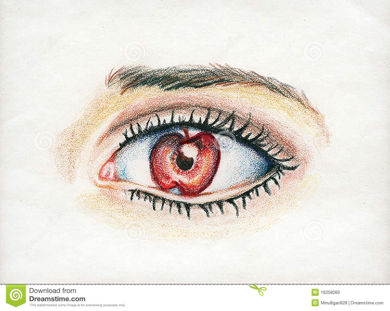 Apple of My Eye stock illustration. Illustration of lashes.