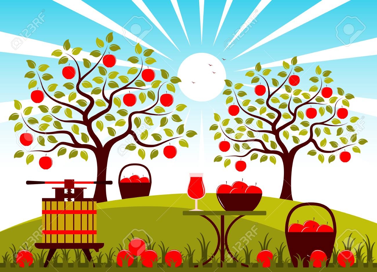vector fruit press and table with apple drink in apple orchard.