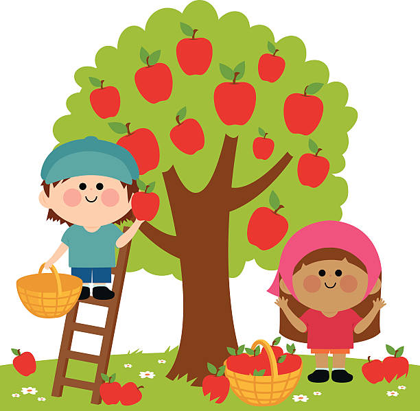 Apple orchard clipart 3 » Clipart Station.