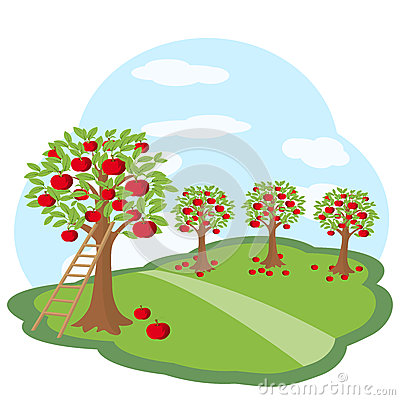 Apple orchard clipart free.