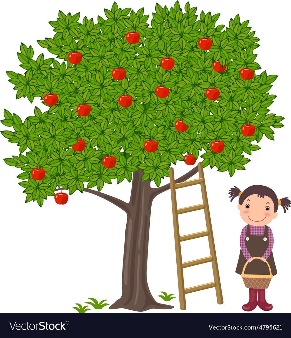 Girl picking apples.