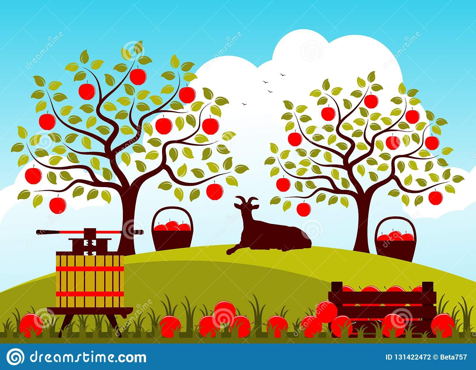 Apple harvest stock vector. Illustration of summer, farm.
