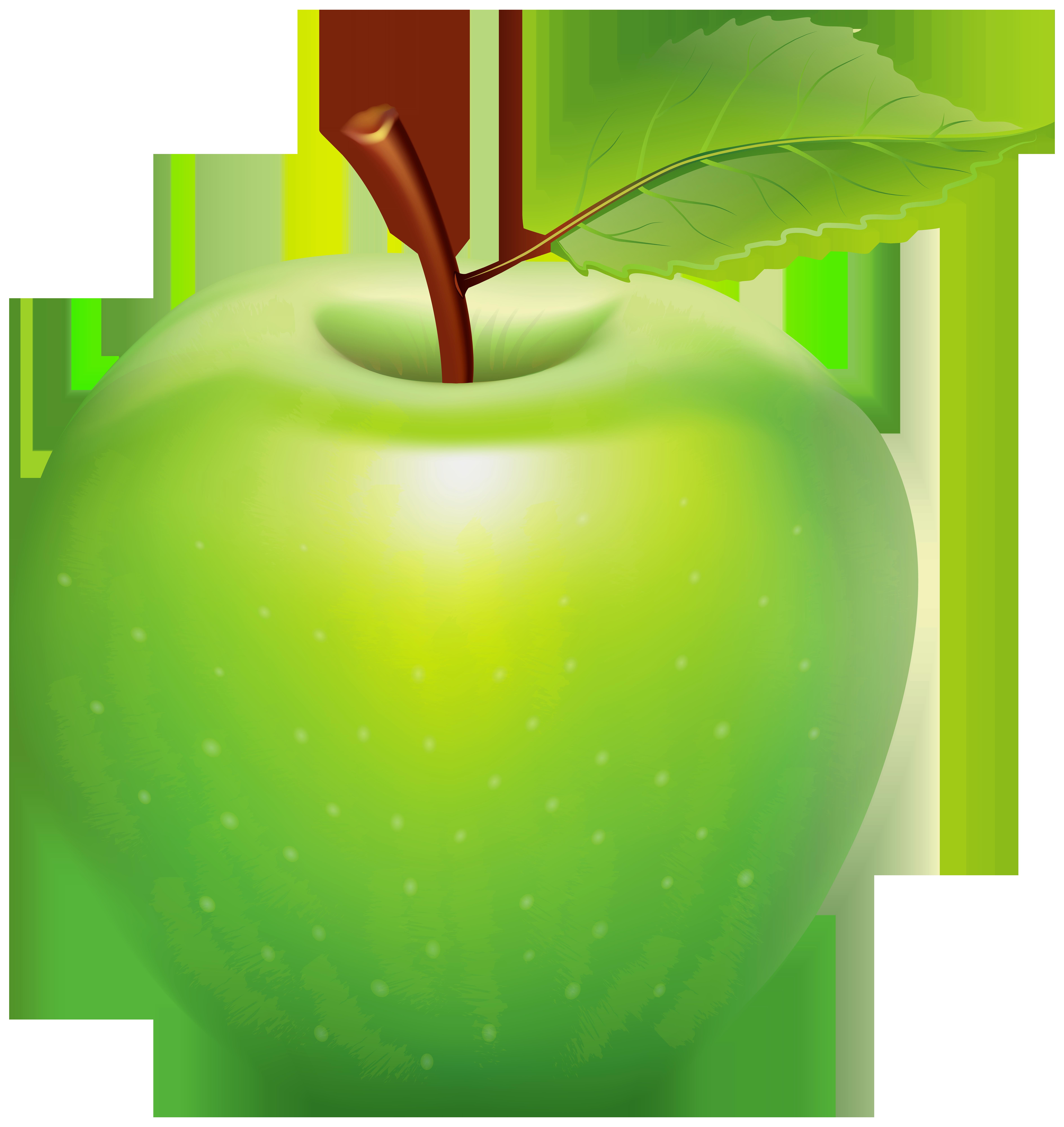 Green Apple PNG Clip Art Image.