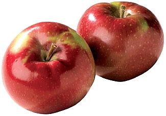 12 2 Apple Fruit Png File.