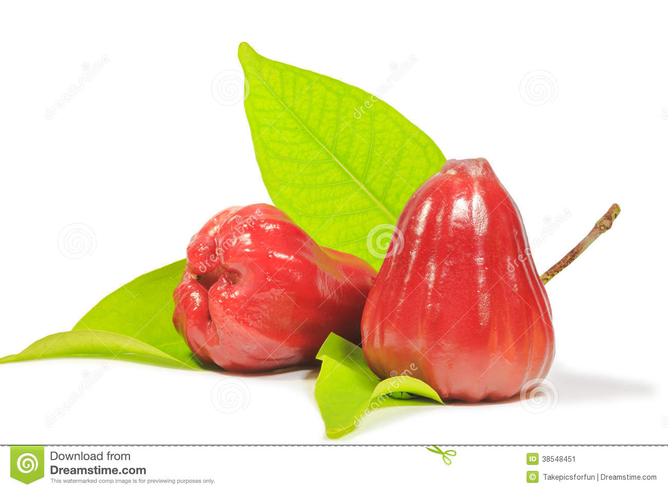 Red Rose Apple Stock Image.