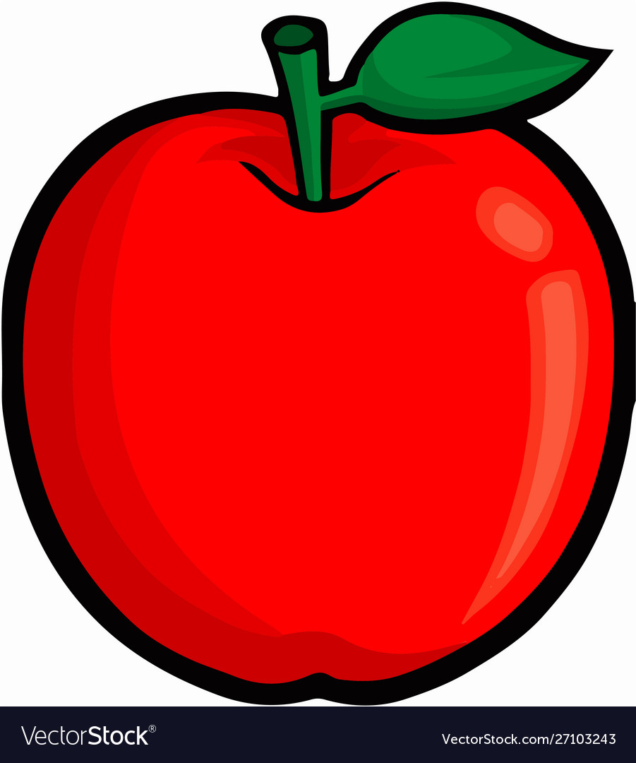 Apple on white background vector image.