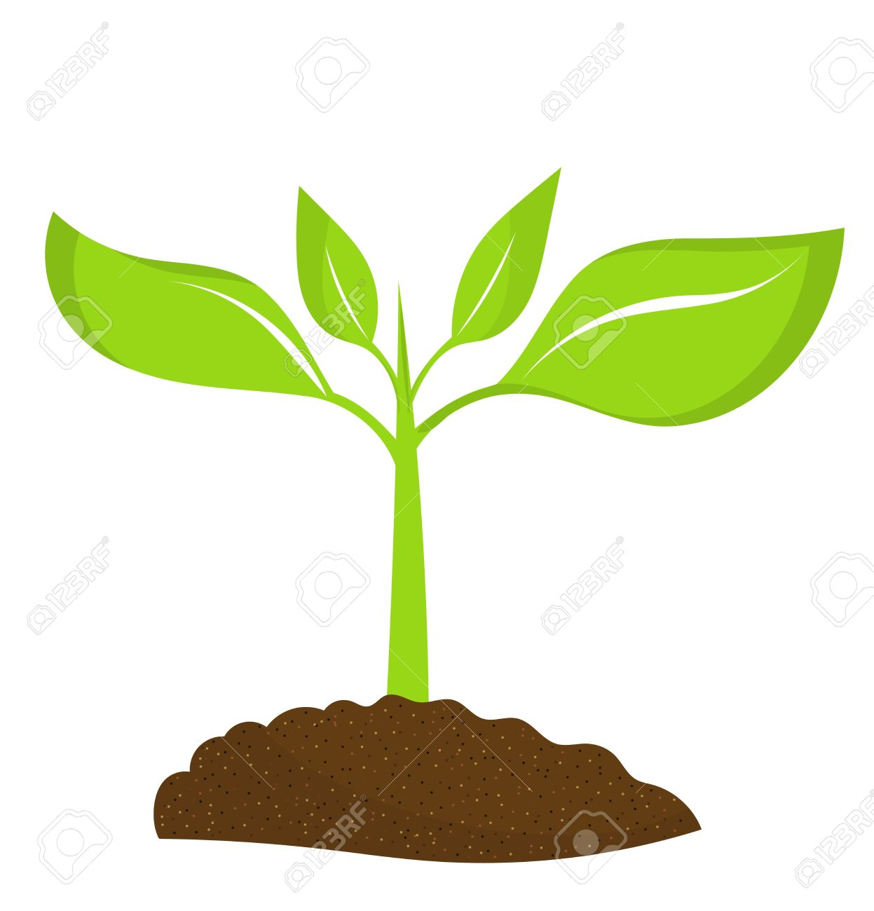 108 Seedling free clipart.