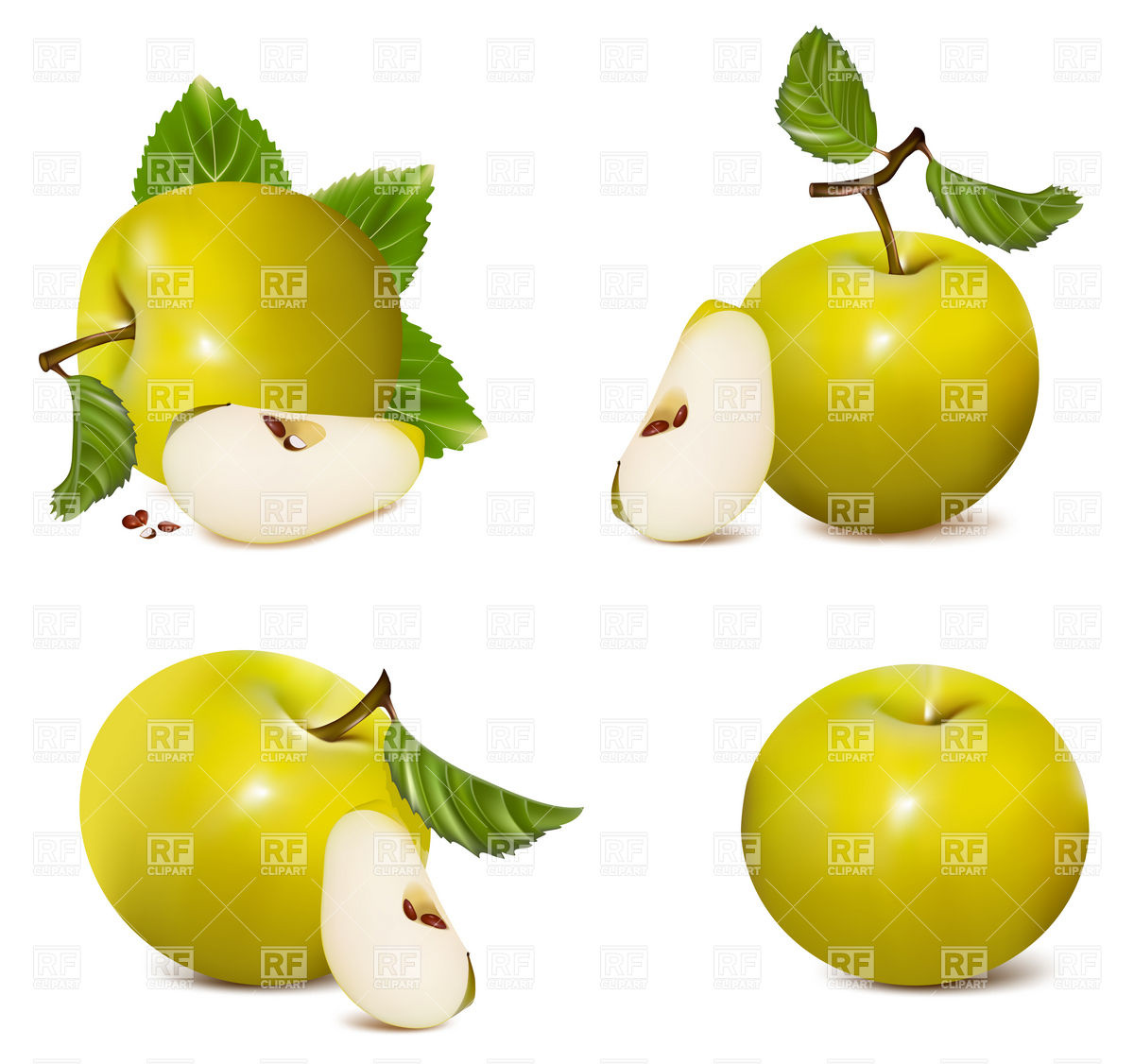 Green apples with leaf and apple slice Stock Vector Image.