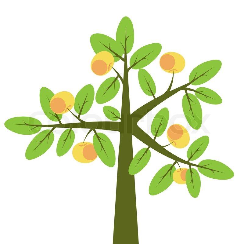 Buy Stock Photos of Apple Trees.