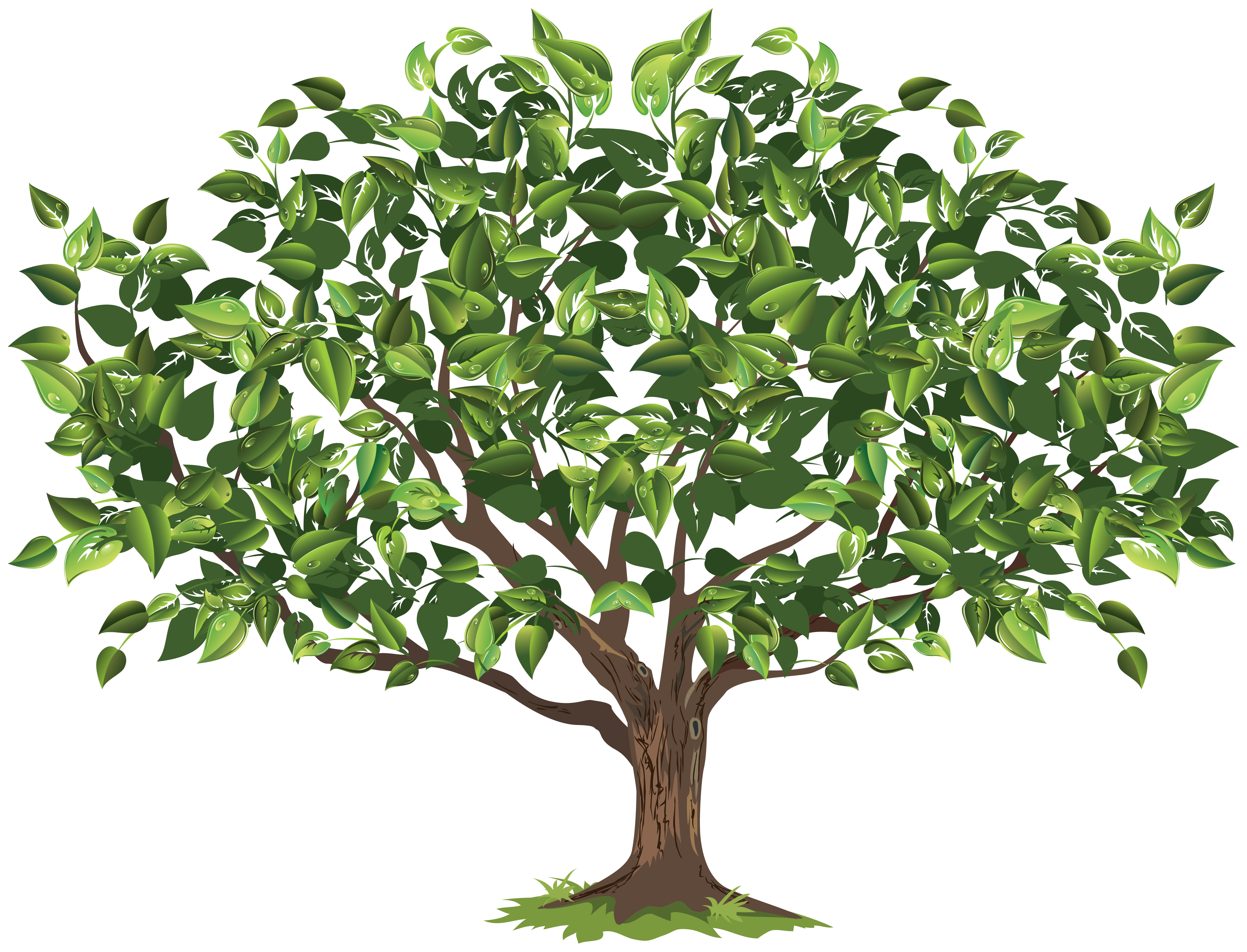 Apple Tree Seedling Clipart.