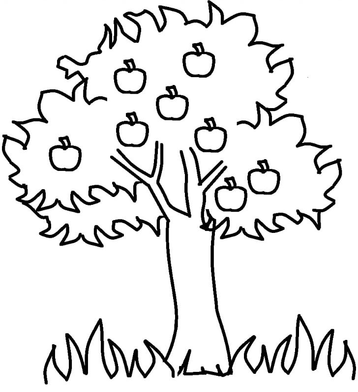 Apple Tree Drawing PNG, Clipart, Area, Art, Artwork, Black, Black.