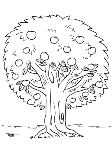 Apple Tree coloring page.