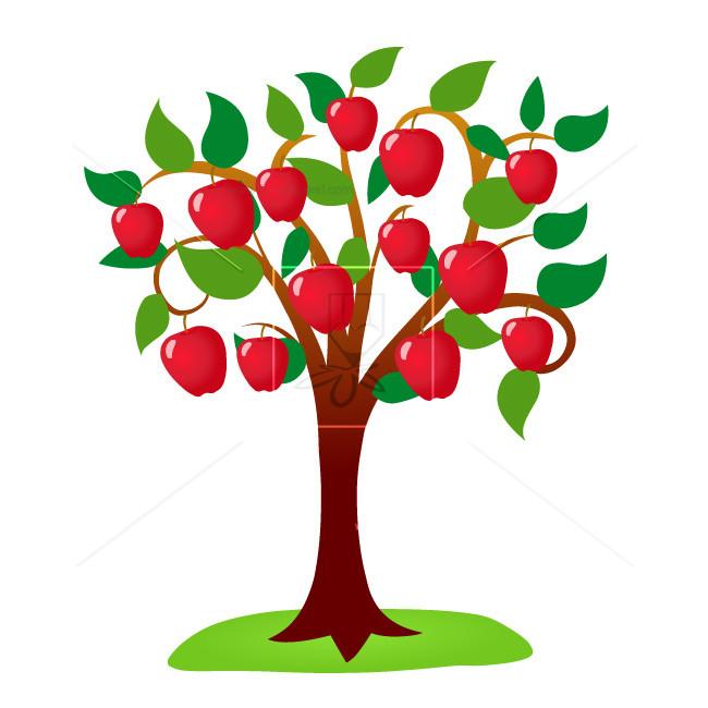Apple Tree.