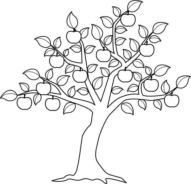 Apple Tree..