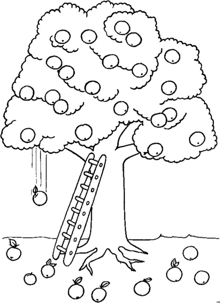 Free Apple Tree Pictures To Color, Download Free Clip Art.