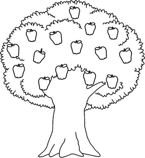 Coloring Pages Apple Tree.