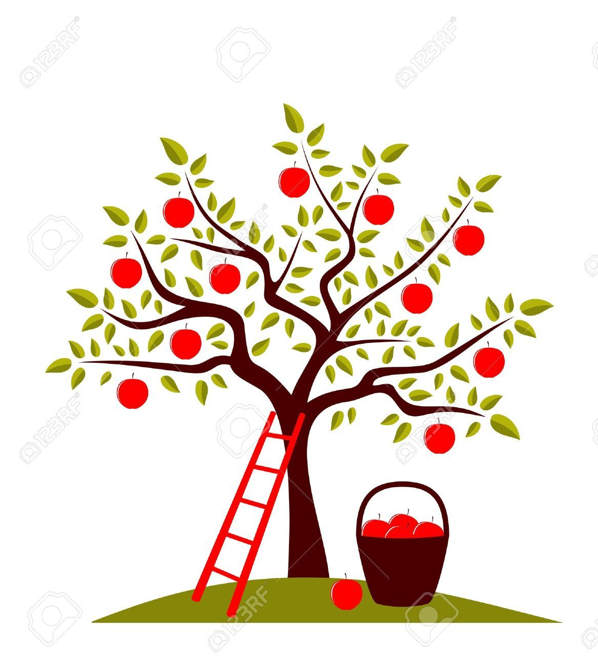 Apple Tree Images, Stock Pictures, Royalty Free Apple Tree.