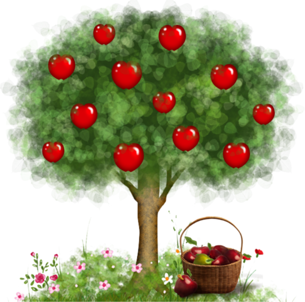 Apple Tree Drawing clipart.