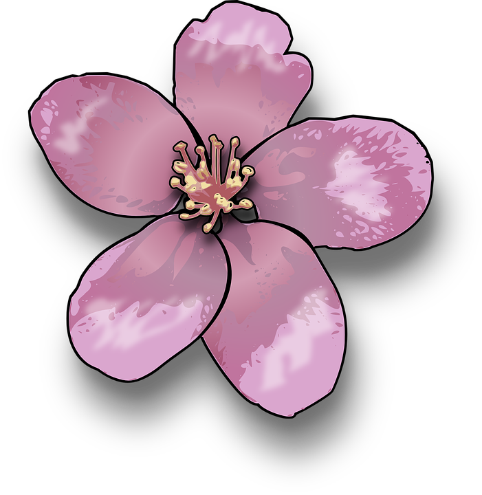 Free vector graphic: Flower, Apple, Blossom, Pink.