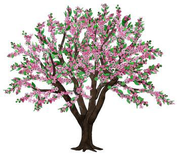 Clip Art Seasons of an Apple Tree.