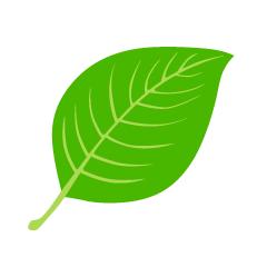 Free Glossy Leaf Clipart Image|Illustoon.