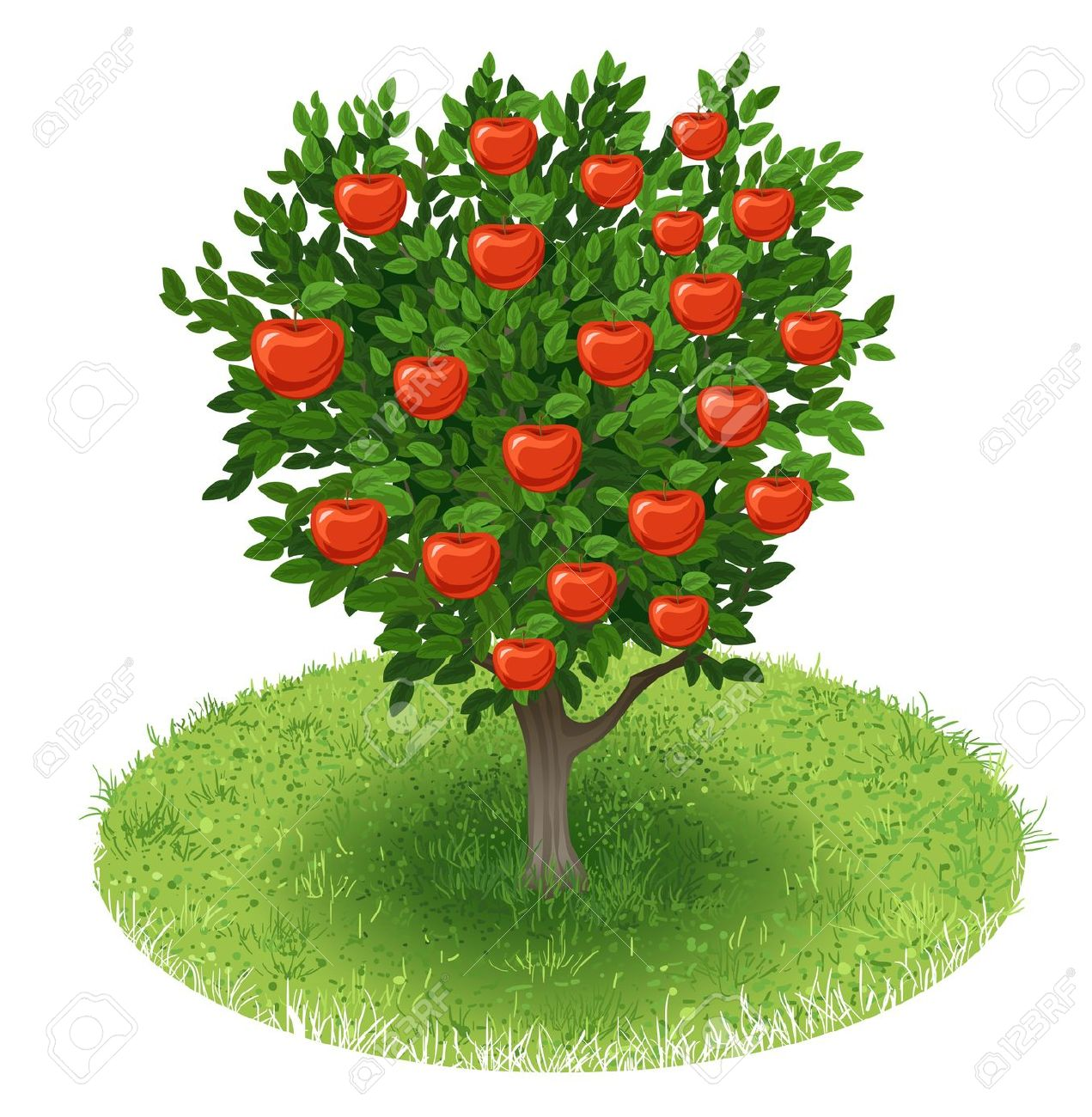 Apple tree in a field clipart.