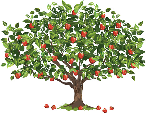 Apple Tree, PC Apple Tree Wonderful Backgrounds (SH.G).