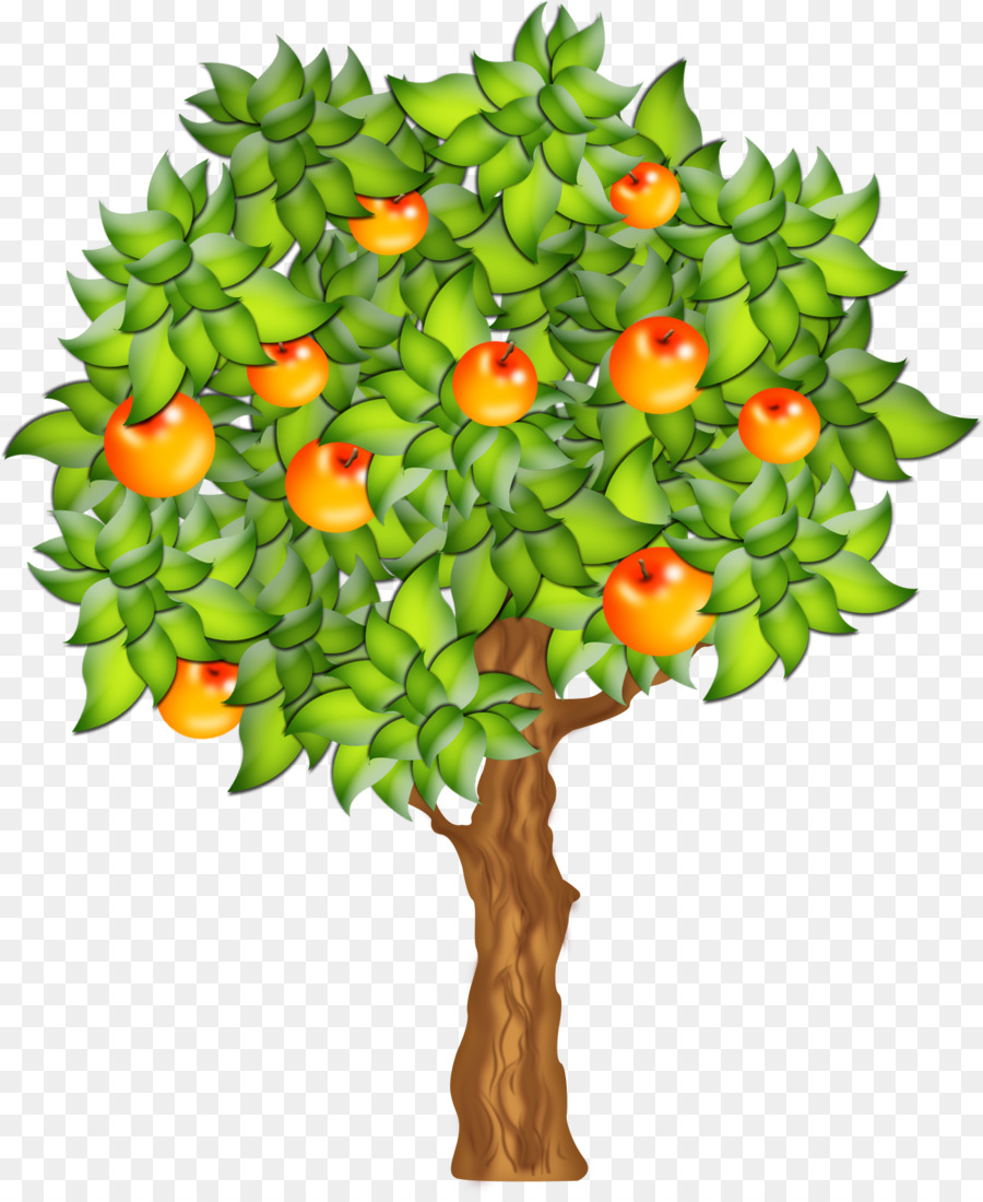 Apple Tree png download.
