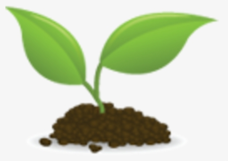 Free Seedling Clip Art with No Background.